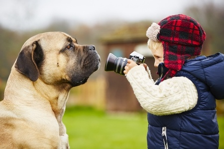 33764264 - little boy with camera is shooting his dog