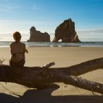 55002279 - young adult woman sitting on an old tree trunk at wharariki beach in new zealand